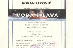 goran-lekovic-licenca